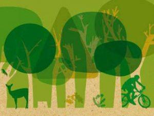 Jeu écologique n°1 – C'est toi le conservateur