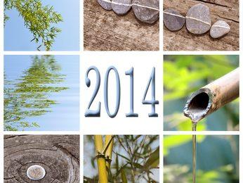Quel chemin pour 2014 ?