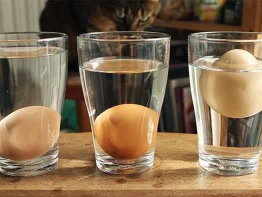 Truc : reconnaître la fraîcheur d'un œuf