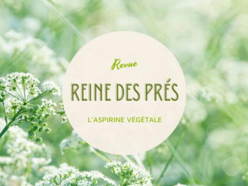 You are currently viewing Les bienfaits de la Tisane Reine des Prés